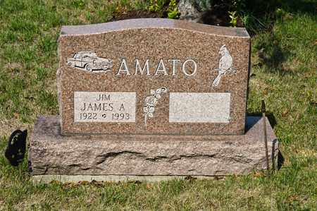 AMATO, JAMES A - Richland County, Ohio | JAMES A AMATO - Ohio Gravestone Photos