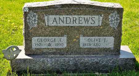 ANDREWS, GEORGE T - Richland County, Ohio | GEORGE T ANDREWS - Ohio Gravestone Photos