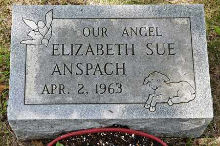 ANSPACH, ELIZABETH SUE - Richland County, Ohio | ELIZABETH SUE ANSPACH - Ohio Gravestone Photos