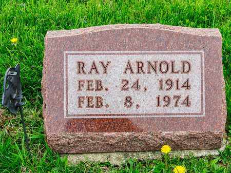 ARNOLD, RAY - Richland County, Ohio | RAY ARNOLD - Ohio Gravestone Photos