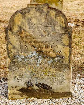 AYRES, CYNTHIA - Richland County, Ohio | CYNTHIA AYRES - Ohio Gravestone Photos