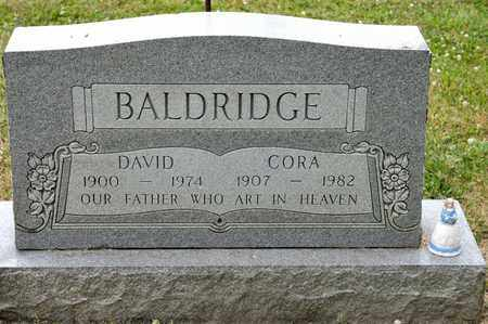 BALDRIDGE, DAVID - Richland County, Ohio | DAVID BALDRIDGE - Ohio Gravestone Photos