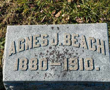 BEACH, AGNES J - Richland County, Ohio | AGNES J BEACH - Ohio Gravestone Photos