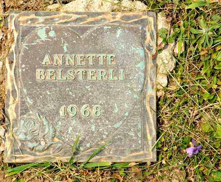 BELSTERLI, ANNETTE - Richland County, Ohio | ANNETTE BELSTERLI - Ohio Gravestone Photos