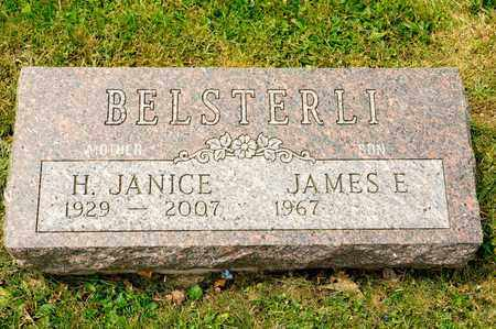 BELSTERLI, H JANICE - Richland County, Ohio | H JANICE BELSTERLI - Ohio Gravestone Photos