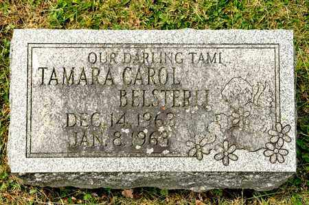 BELSTERLI, TAMARA CAROL - Richland County, Ohio | TAMARA CAROL BELSTERLI - Ohio Gravestone Photos