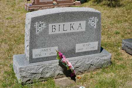 BILKA, JAMES - Richland County, Ohio | JAMES BILKA - Ohio Gravestone Photos
