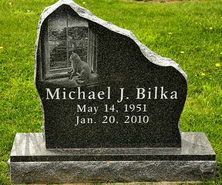 BILKA, MICHAEL J - Richland County, Ohio | MICHAEL J BILKA - Ohio Gravestone Photos
