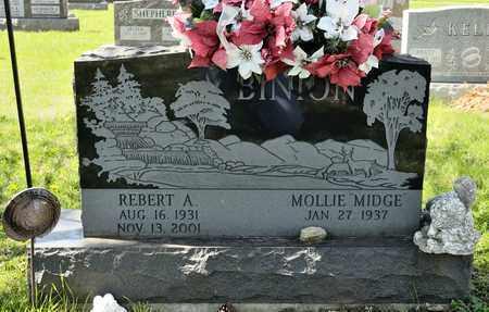 BINION, REBERT A - Richland County, Ohio | REBERT A BINION - Ohio Gravestone Photos