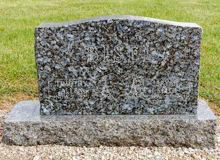 BISEL, TIMOTHY ALLEN - Richland County, Ohio | TIMOTHY ALLEN BISEL - Ohio Gravestone Photos