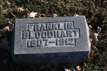 BLOODHART, FRANKLIN - Richland County, Ohio | FRANKLIN BLOODHART - Ohio Gravestone Photos