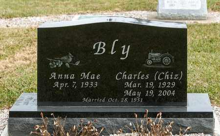 BLY, CHARLES - Richland County, Ohio | CHARLES BLY - Ohio Gravestone Photos