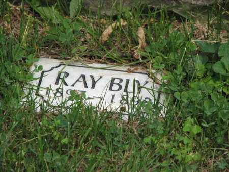 BLY, RAY - Richland County, Ohio | RAY BLY - Ohio Gravestone Photos