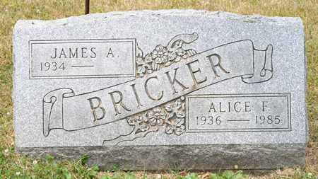 BRICKER, ALICE F - Richland County, Ohio | ALICE F BRICKER - Ohio Gravestone Photos
