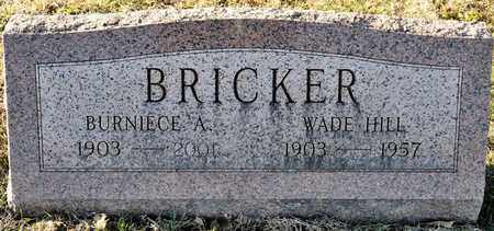 BRICKER, WADE HILL - Richland County, Ohio | WADE HILL BRICKER - Ohio Gravestone Photos