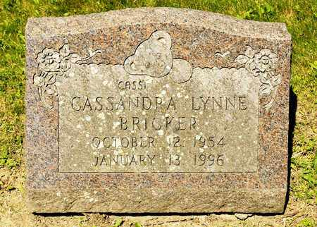 BRICKER, CASSANDRA LYNNE - Richland County, Ohio | CASSANDRA LYNNE BRICKER - Ohio Gravestone Photos
