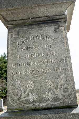 BRICKER, CATHARINE - Richland County, Ohio   CATHARINE BRICKER - Ohio Gravestone Photos