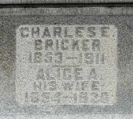 BRICKER, CHARLES E - Richland County, Ohio | CHARLES E BRICKER - Ohio Gravestone Photos