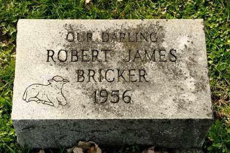 BRICKER, ROBERT JAMES - Richland County, Ohio | ROBERT JAMES BRICKER - Ohio Gravestone Photos