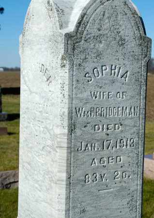 BRIDGEMAN, SOPHIA - Richland County, Ohio | SOPHIA BRIDGEMAN - Ohio Gravestone Photos