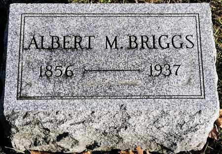 BRIGGS, ALBERT M - Richland County, Ohio | ALBERT M BRIGGS - Ohio Gravestone Photos