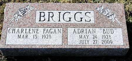 "BRIGGS, ADRIAN ""BUD"" - Richland County, Ohio | ADRIAN ""BUD"" BRIGGS - Ohio Gravestone Photos"