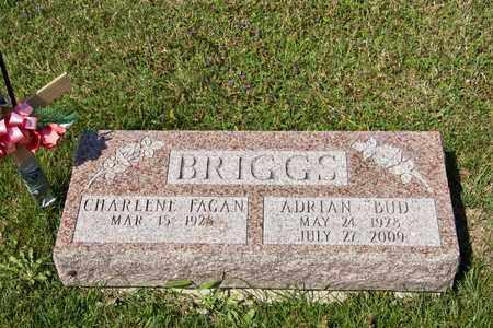 BRIGGS, ADRIAN - Richland County, Ohio | ADRIAN BRIGGS - Ohio Gravestone Photos