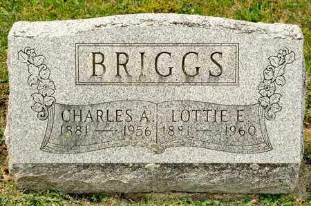 BRIGGS, LOTTIE E - Richland County, Ohio | LOTTIE E BRIGGS - Ohio Gravestone Photos