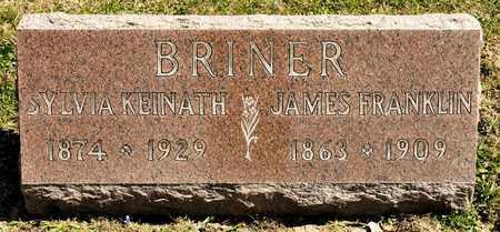 KEINATH BRINER, SYLVIA - Richland County, Ohio | SYLVIA KEINATH BRINER - Ohio Gravestone Photos