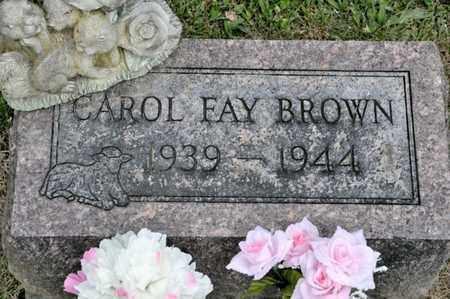 BROWN, CAROL FAY - Richland County, Ohio | CAROL FAY BROWN - Ohio Gravestone Photos