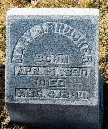 BRUCKER, MARY J - Richland County, Ohio | MARY J BRUCKER - Ohio Gravestone Photos
