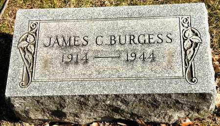 BURGESS, JAMES C - Richland County, Ohio | JAMES C BURGESS - Ohio Gravestone Photos
