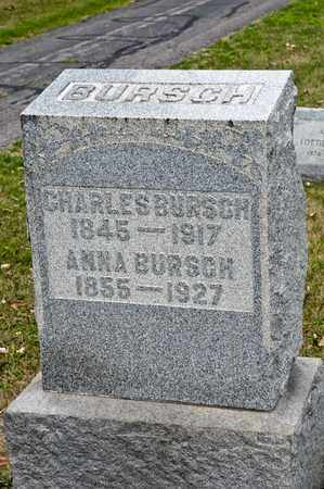 BURSCH, CHARLES - Richland County, Ohio | CHARLES BURSCH - Ohio Gravestone Photos