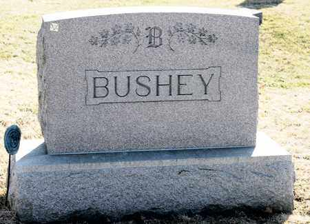 BUSHEY, JOHN A - Richland County, Ohio | JOHN A BUSHEY - Ohio Gravestone Photos