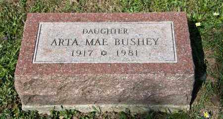 BUSHEY, ARTA MAE - Richland County, Ohio | ARTA MAE BUSHEY - Ohio Gravestone Photos