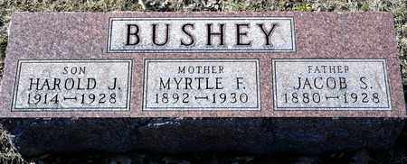 BUSHEY, MYRTLE F - Richland County, Ohio | MYRTLE F BUSHEY - Ohio Gravestone Photos