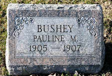 BUSHEY, PAULINE M - Richland County, Ohio | PAULINE M BUSHEY - Ohio Gravestone Photos