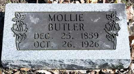 BUTLER, MOLLIE - Richland County, Ohio | MOLLIE BUTLER - Ohio Gravestone Photos