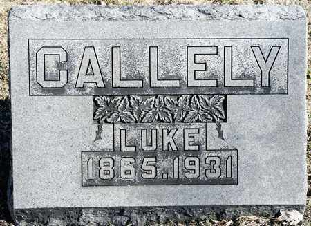 CALLELY, LUKE - Richland County, Ohio | LUKE CALLELY - Ohio Gravestone Photos
