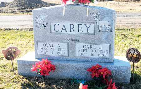 CAREY, OVAL A - Richland County, Ohio | OVAL A CAREY - Ohio Gravestone Photos