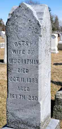 CHAPMAN, BETSY - Richland County, Ohio | BETSY CHAPMAN - Ohio Gravestone Photos