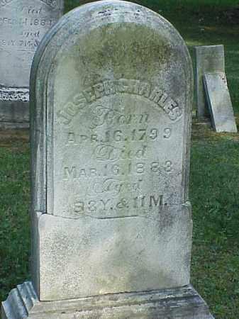 CHARLES, JOSEPH - Richland County, Ohio | JOSEPH CHARLES - Ohio Gravestone Photos