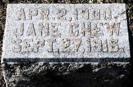 CHEW, JANE - Richland County, Ohio | JANE CHEW - Ohio Gravestone Photos