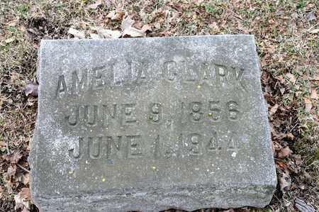 CLARK, AMELIA - Richland County, Ohio | AMELIA CLARK - Ohio Gravestone Photos