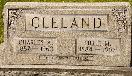 CLELAND, LILLIE M - Richland County, Ohio | LILLIE M CLELAND - Ohio Gravestone Photos