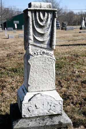 CLINE, BARBARA E - Richland County, Ohio | BARBARA E CLINE - Ohio Gravestone Photos