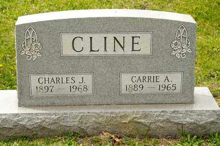 CLINE, CARRIE A - Richland County, Ohio | CARRIE A CLINE - Ohio Gravestone Photos