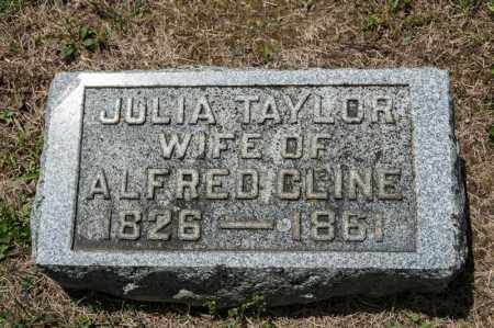 TAYLOR CLINE, JULIA - Richland County, Ohio | JULIA TAYLOR CLINE - Ohio Gravestone Photos