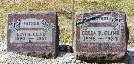 CLINE, LEVI A - Richland County, Ohio | LEVI A CLINE - Ohio Gravestone Photos