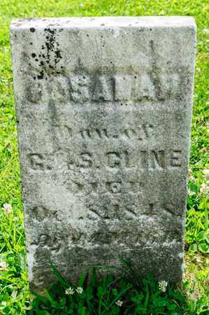 CLINE, ROSANAH - Richland County, Ohio | ROSANAH CLINE - Ohio Gravestone Photos